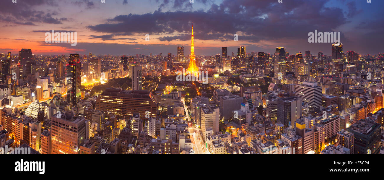 Panorama of the skyline of Tokyo, Japan with the Tokyo Tower photographed at dusk. - Stock Image