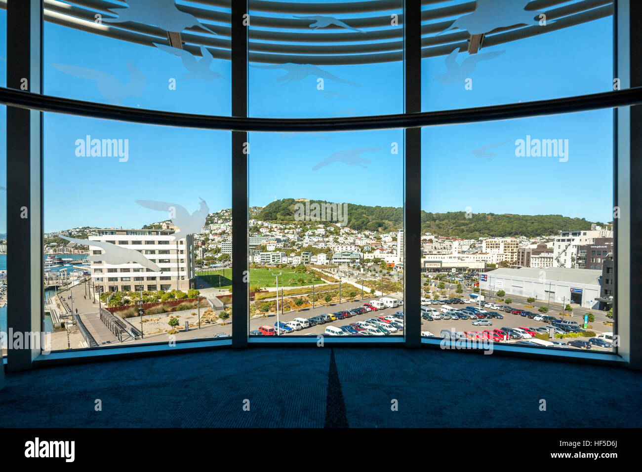 Mount Victoria Wellington New Zealand. View from Te Papa Museum Wellington towards Mt Victoria and the waterfront - Stock Image