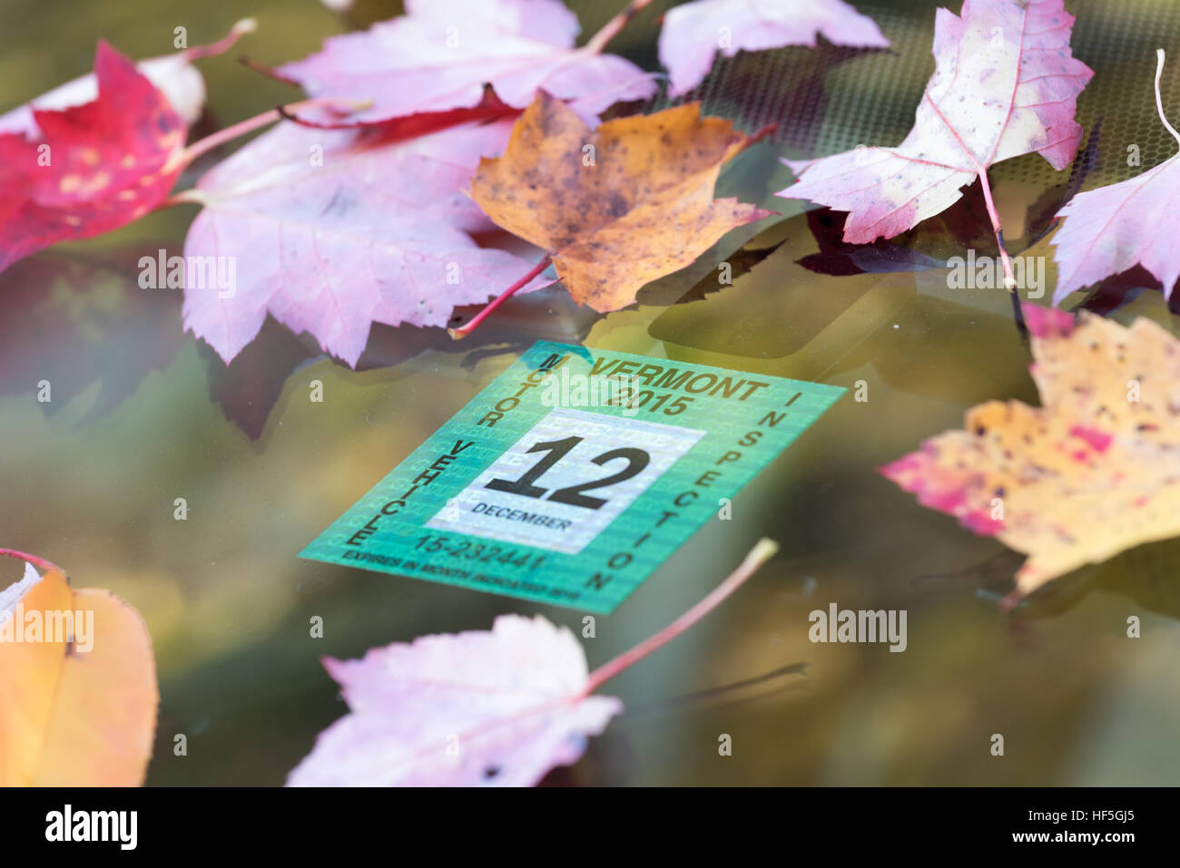 Autumn leaves and inspection sticker on the windshield of a car in Vermont's Green Mountains. - Stock Image
