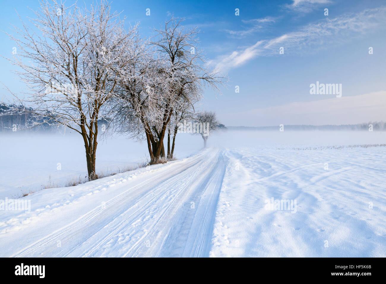 Masuria road in snowy winter, Poland, Europe. Stock Photo
