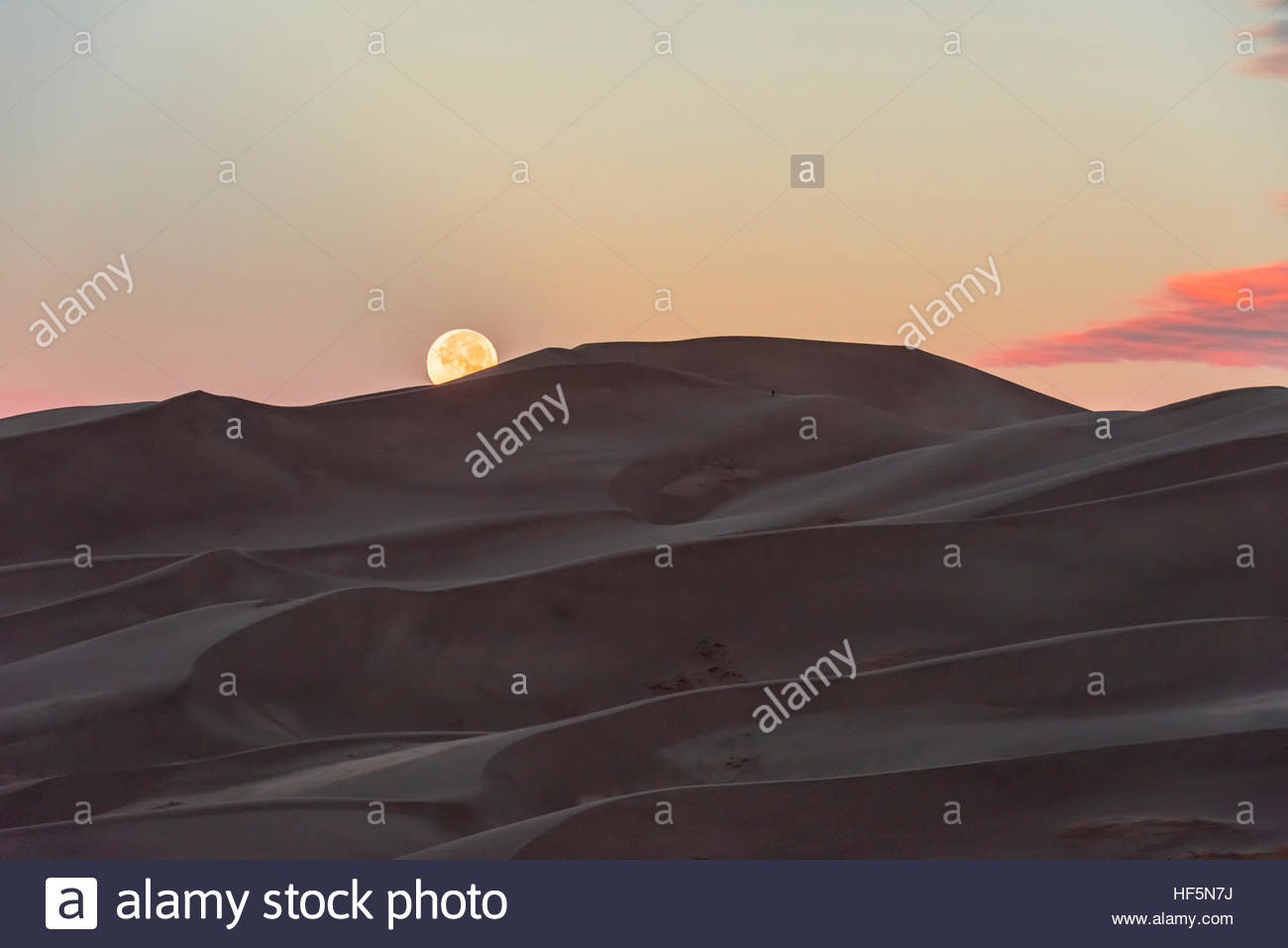 The full moon setting over the 750 foot tall sand dunes, Great Sand Dunes National Park and Preserve, near Mosca, - Stock Image