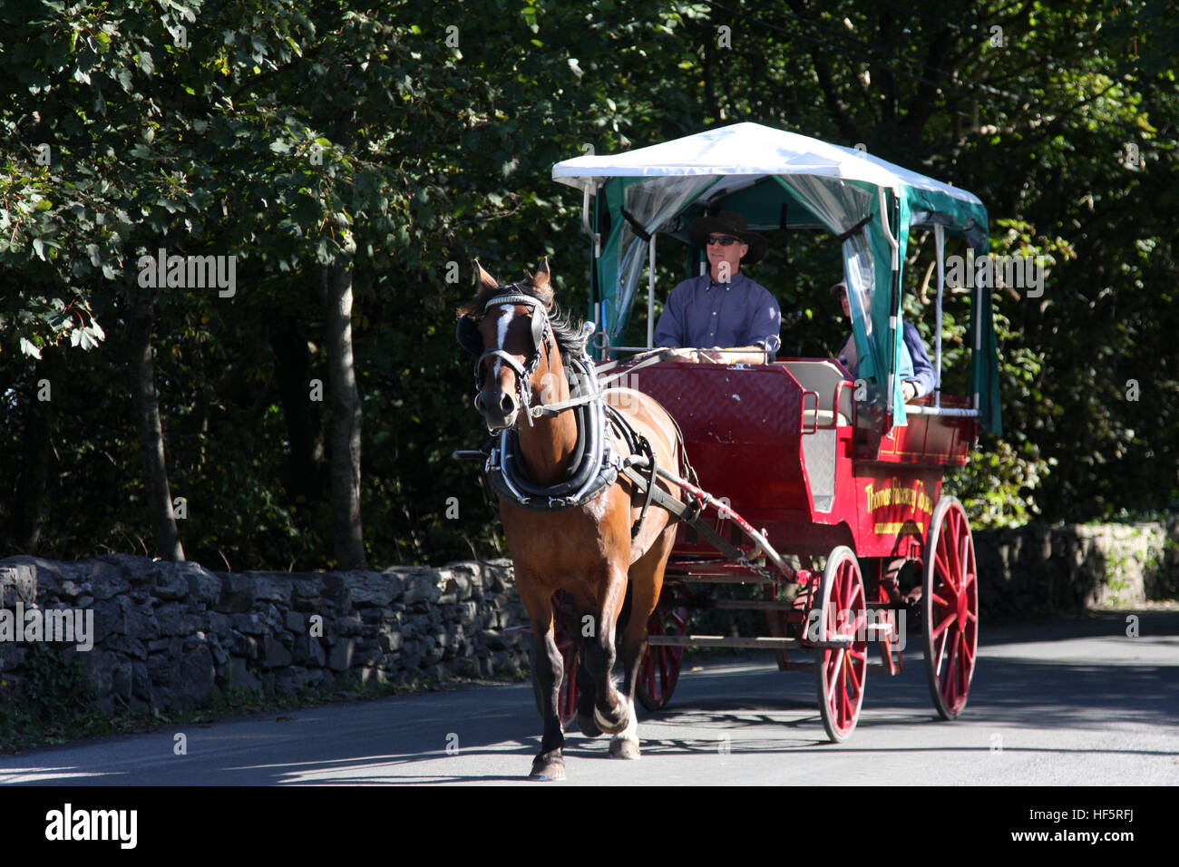 Pony and trap summer Inishmore tour - Stock Image