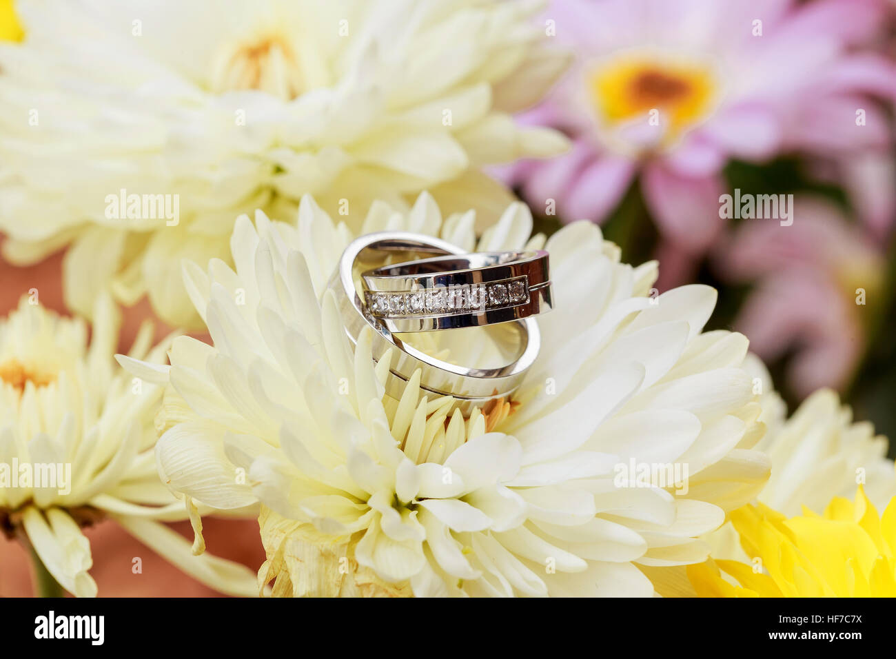 wedding ring with petals ring Valentines day love flowers - Stock Image