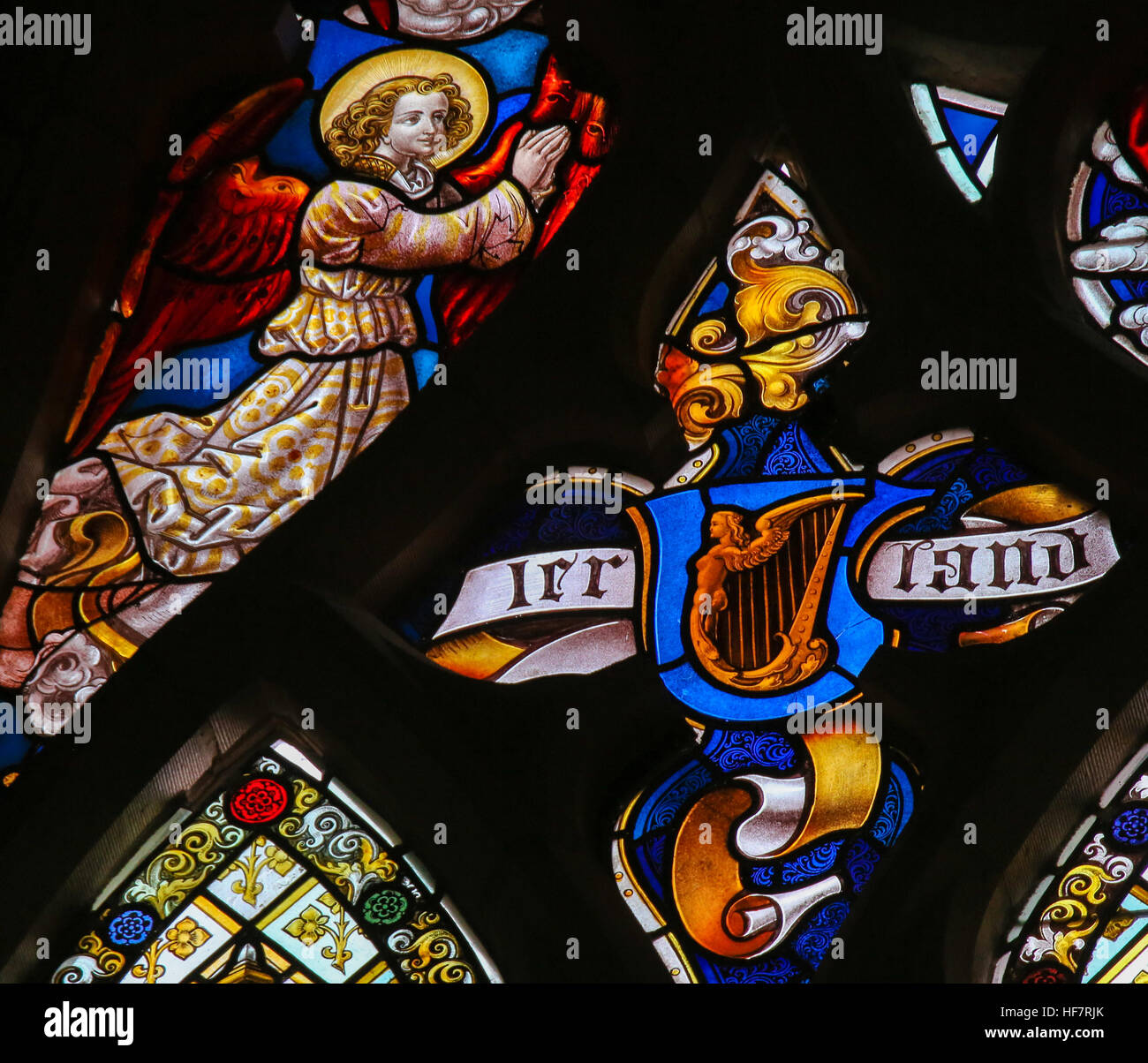 Stained Glass depicting a Celtic Harp as symbol of Ireland in the Cathedral of Saint Bavo in Ghent, Belgium. - Stock Image