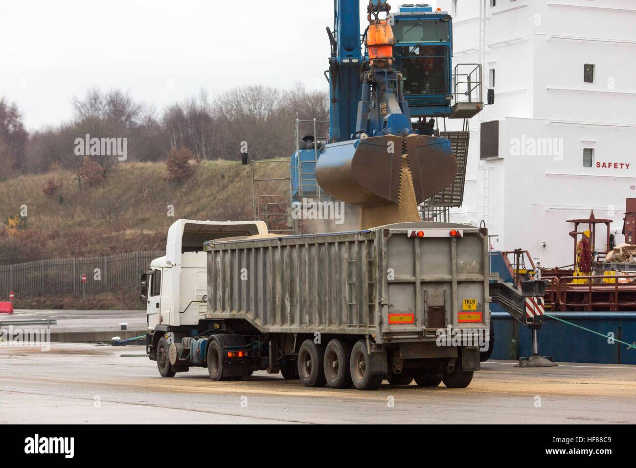 Associated British Ports - Garston , Liverpool . Unloading a ship/ - Stock Image