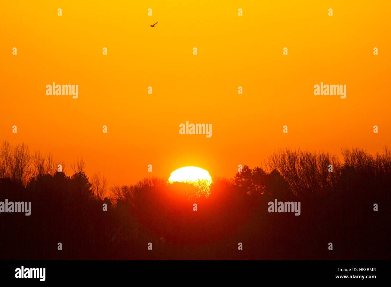 Sunrise over Southport, Merseyside, UK WEATHER: 28th Dec 2016. The red orb of the rising winter sun reaches over - Stock Image