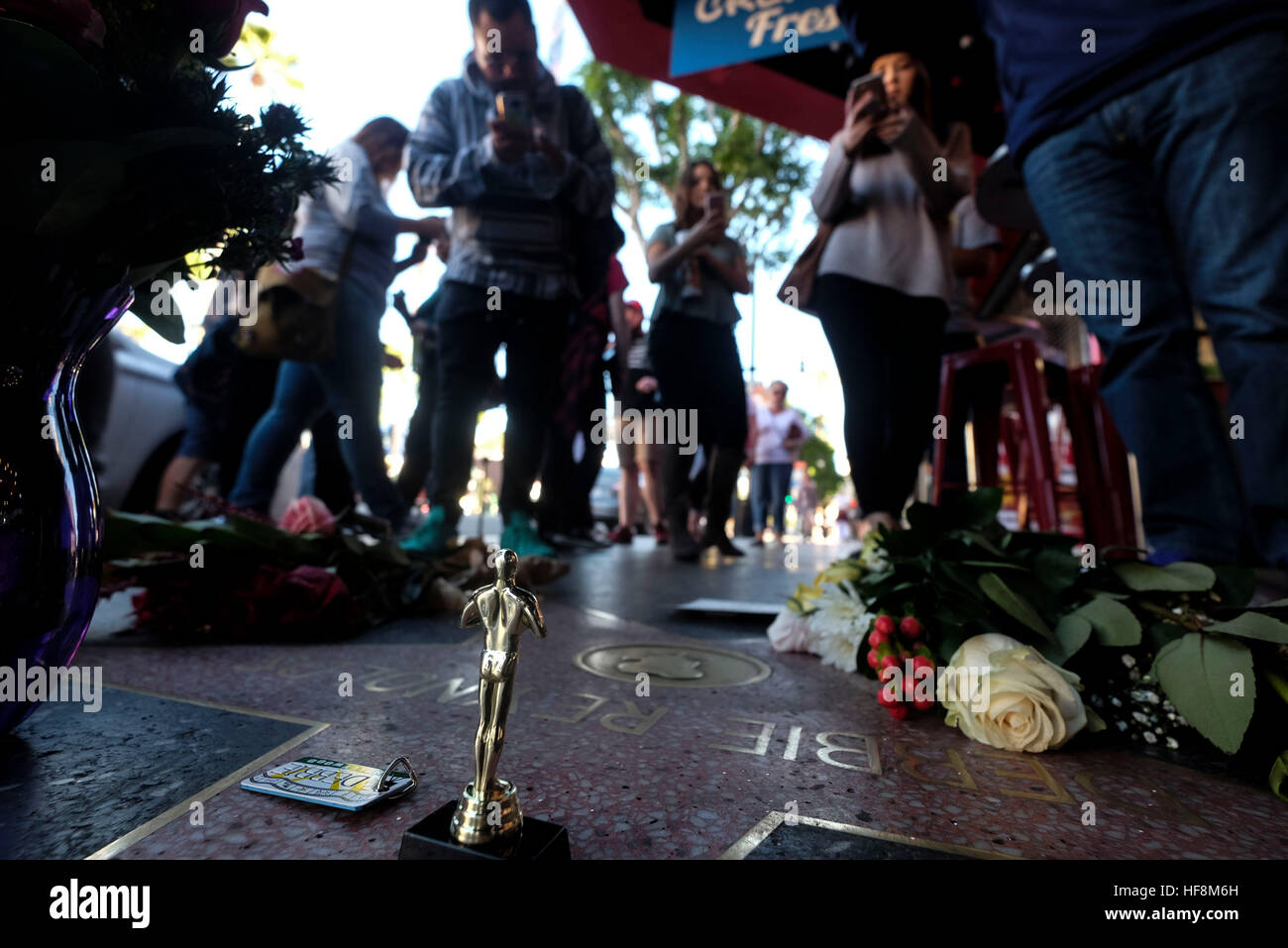 Los Angeles, USA. 29th Dec, 2016. Flowers surround the Hollywood Walk of Fame star of Debbie Reynolds, in Los Angeles, - Stock Image