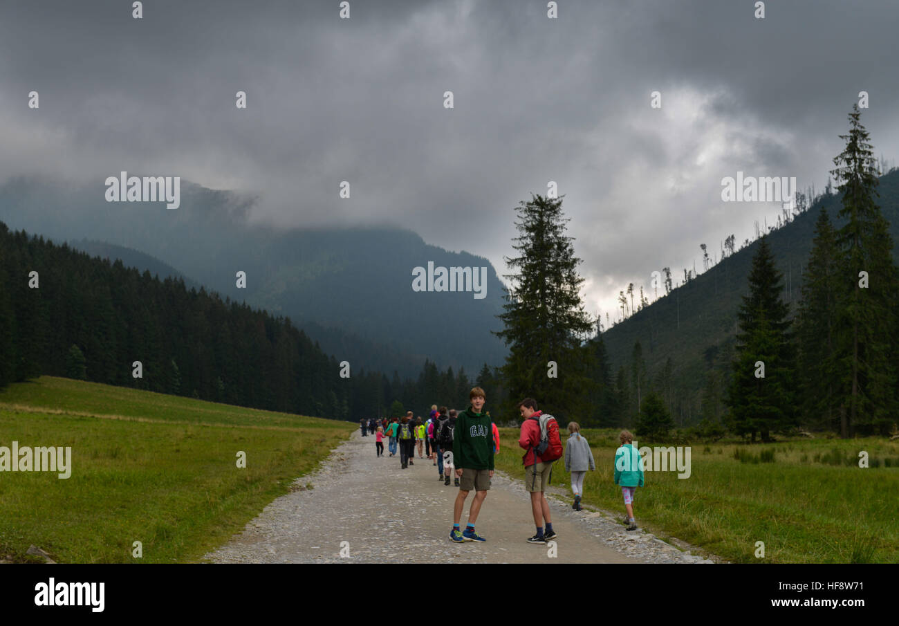 Wanderer, Bergalm, Dolina Koscieliska, Hohe Tatra, Polen, Traveller, mountain alp, the high Tatra Mountains, Poles - Stock Image
