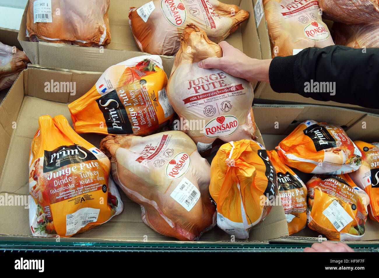 Poultry, deep frozen Turkey packings in a supermarket. - Stock Image