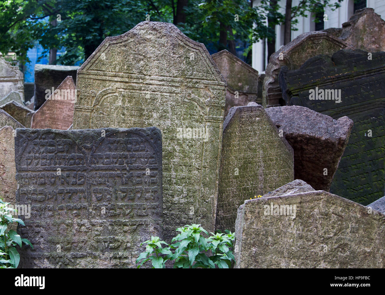 PRAGUE, CZECH REPUBLIC - June 19, 2015: Abandoned tombstones at the Old Jewish Cemetery in Prague, Czech Republic. - Stock Image