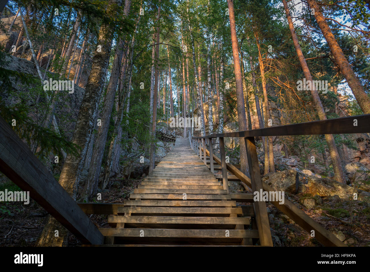 Wooden stairways through forest to the viewpoint - Stock Image