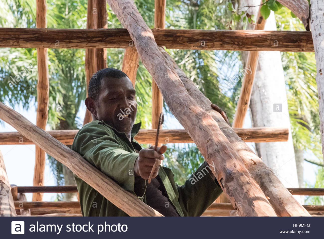 Steps in construction of a traditional Cuban dry palm leaves building. Located among two important cities the construction - Stock Image