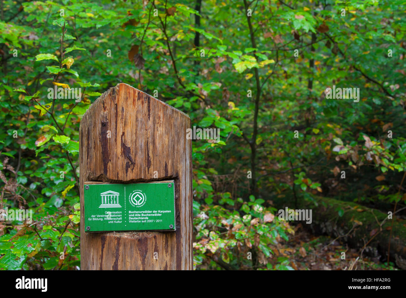 Unesco sign in the Müritz National Park / Müritz Nationalpark, Mecklenburg-Western Pomerania, Germany - Stock Image