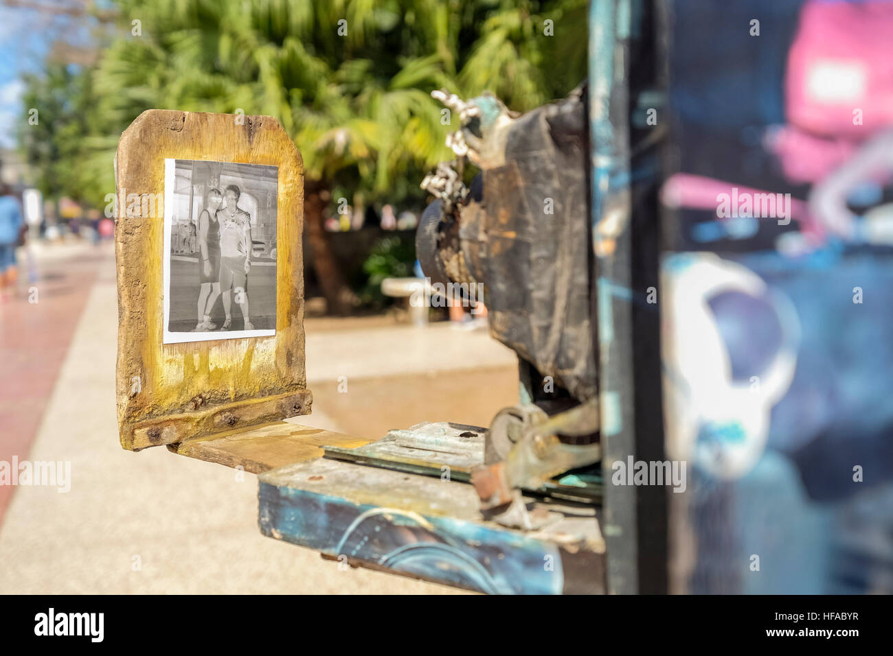 Photographer minutero focusing on the paper negative to reproduce as a positive print, Parque Central, La Havana, - Stock Image