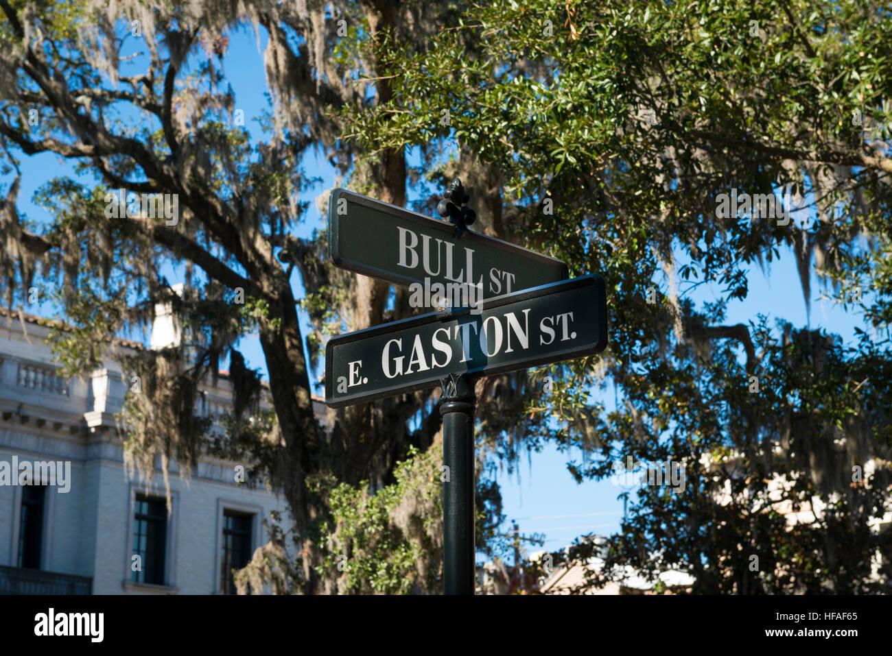 USA Georgia Savannah typical road signs Bull & E Gaston Street trees with Spanish Moss - Stock Image