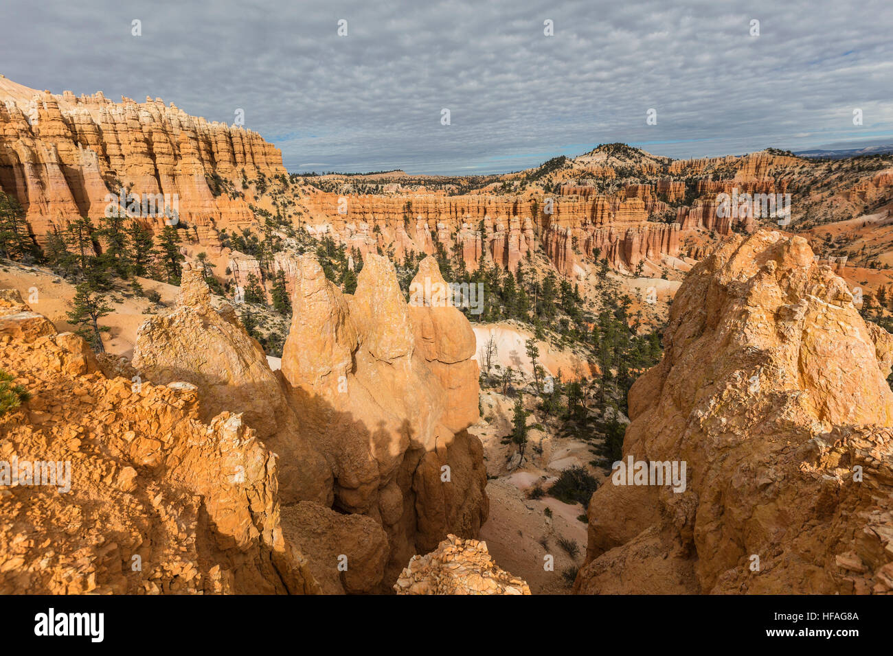 Bryce Canyon National Park afternoon hoodoo view in Southern Utah. - Stock Image