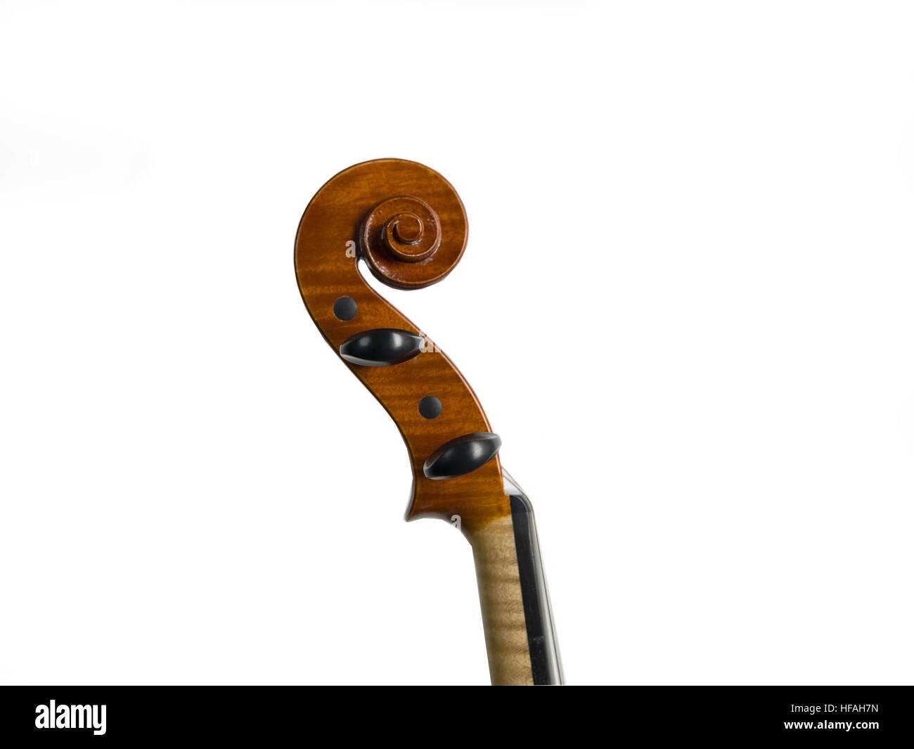 Cremonese contemporary violin detail, head with curl - Stock Image