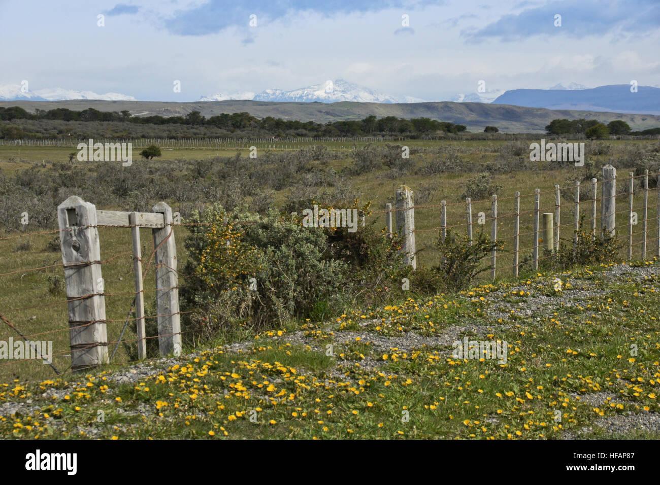 Landscape along Ruta Aonikenk to Rio Verde, north of Punta Arenas, Patagonia, Chile - Stock Image