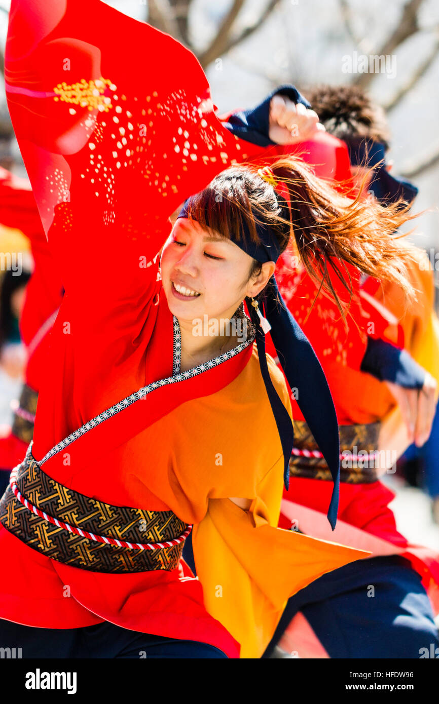 Yosakoi festival. Young woman dancer in orange and yellow yakata jacket, dancing and smiling while swirling yellow - Stock Image