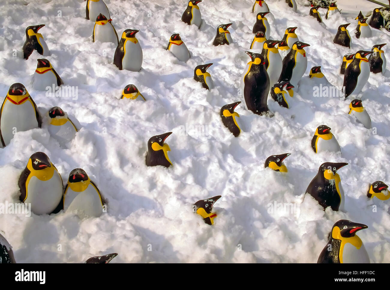 Plastic Emperor penguins, Aptenodytes forstein, sticking out of a snow bank. - Stock Image