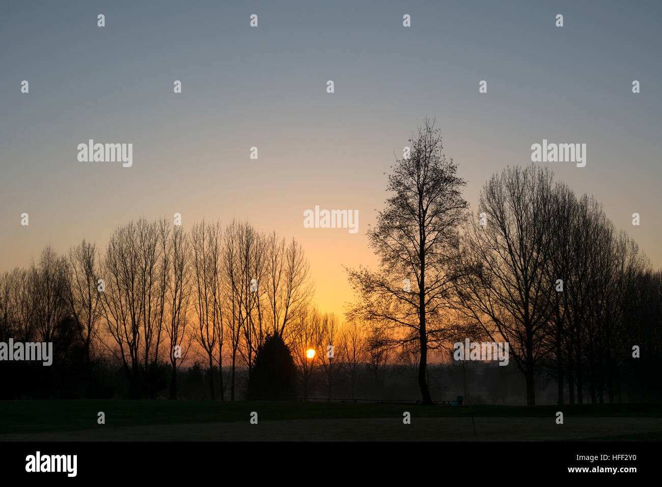 Sunset behind trees in winter - Stock Image