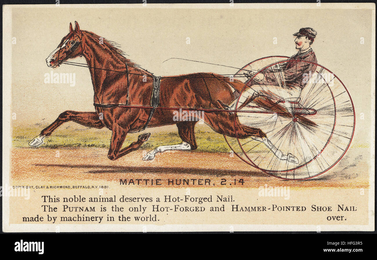 Agriculture Trade Cards - Mattie Hunter, 2.14 - This noble animal deserves a hot-forged nail. The Putnam is the - Stock Image