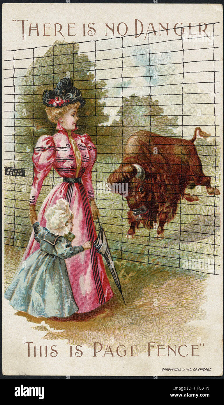Agriculture Trade Cards - Don't stop the game. Page fence will stop them - Stock Image