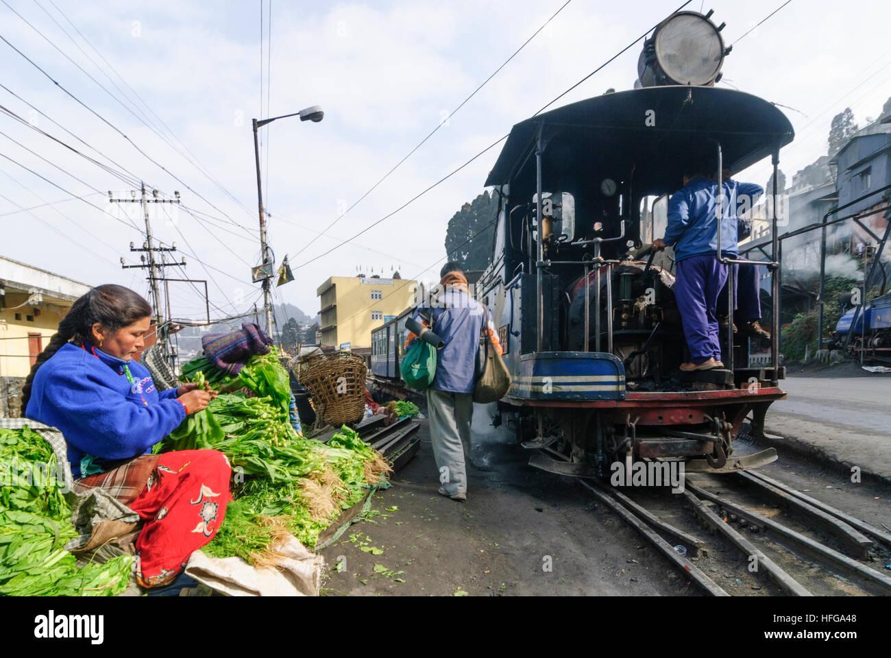 Darjeeling: Darjeeling Himalayan Railway at Darjeeling Railway Station, West Bengal, Westbengalen, India - Stock Image