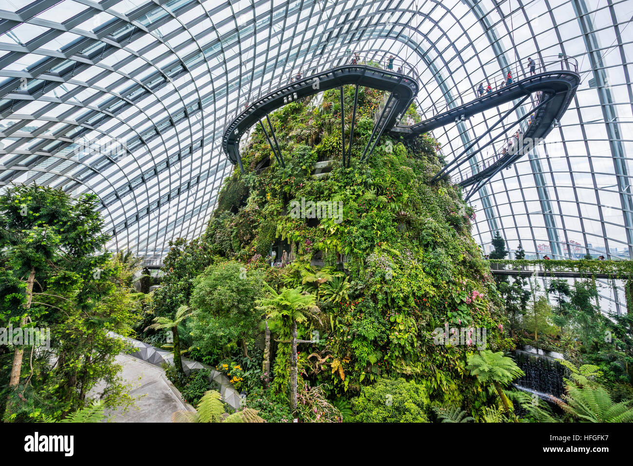 Singapore, Gardens by the Bay, view of the Treetop and Cloud Walks at the lush vegetation mountain within the giant - Stock Image
