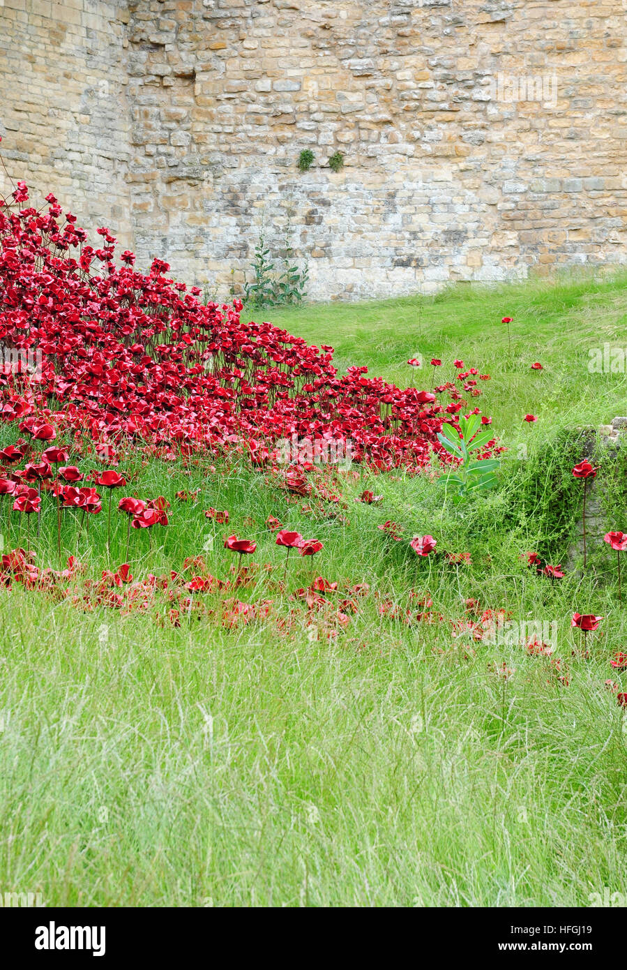 Part of the Poppy Wave Installation at Lincoln Castle.  Artist Paul cummins.  Designer Tom Piper. - Stock Image