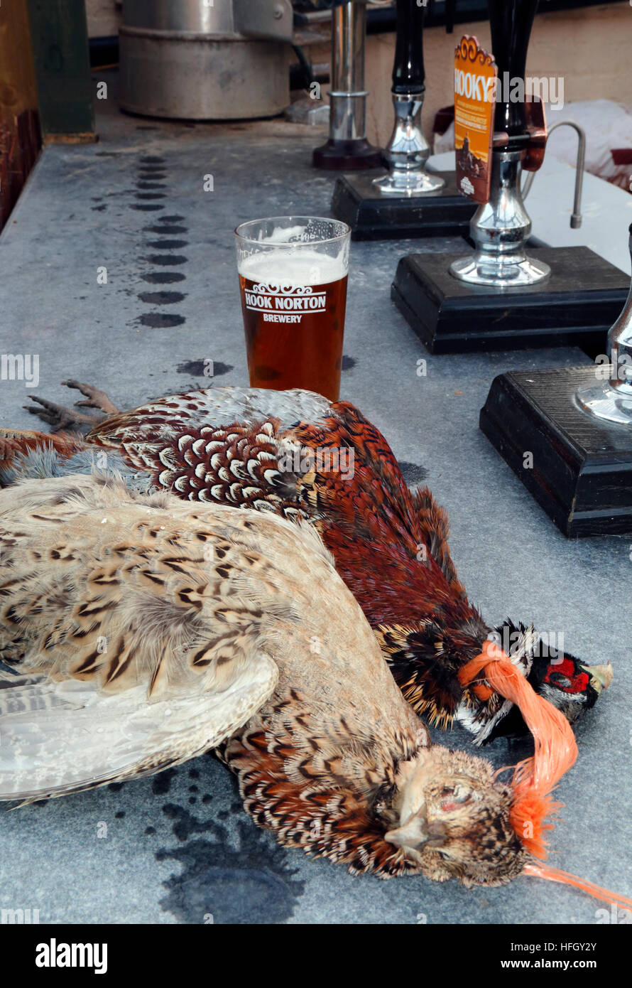 A pair of dead pheasants on a bar in a public house in Cropredy, Oxfordshire - Stock Image