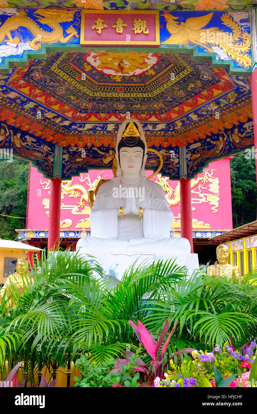Statue at the ten thousand buddhas monastery Sha Tin Hong Kong China - Stock Image