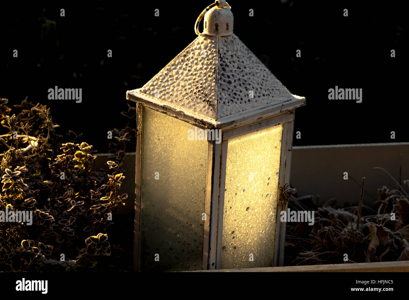 Hoar frost on a garden lantern in cold winter sundlight - Stock Image