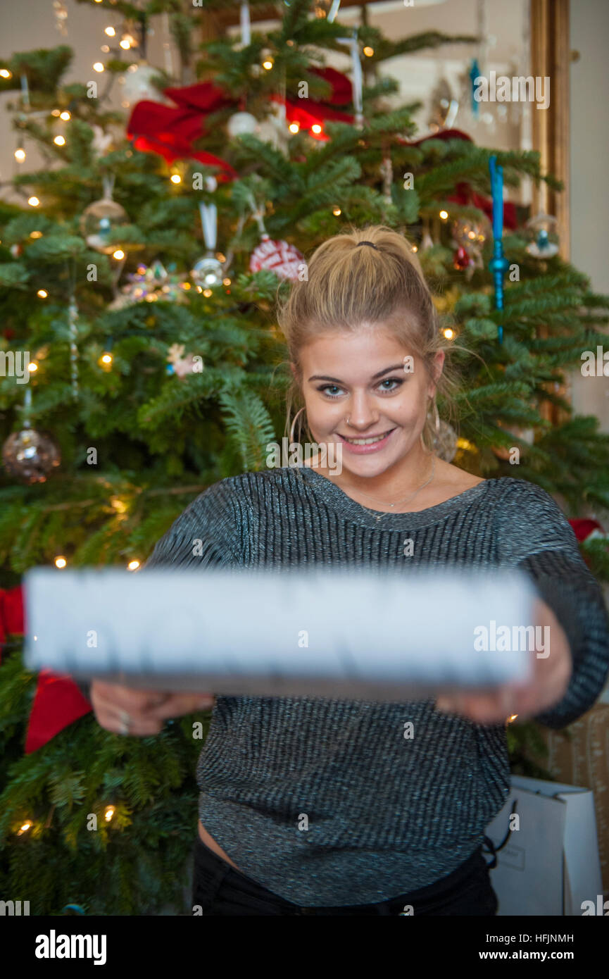 A pretty girl offers a present from under the Christmas tree - Stock Image