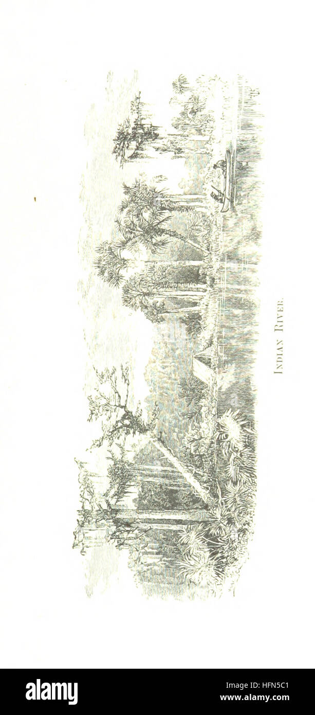 Camping and cruising in Florida ... Illustrated Image taken from page 45 of 'Camping and cruising in - Stock Image