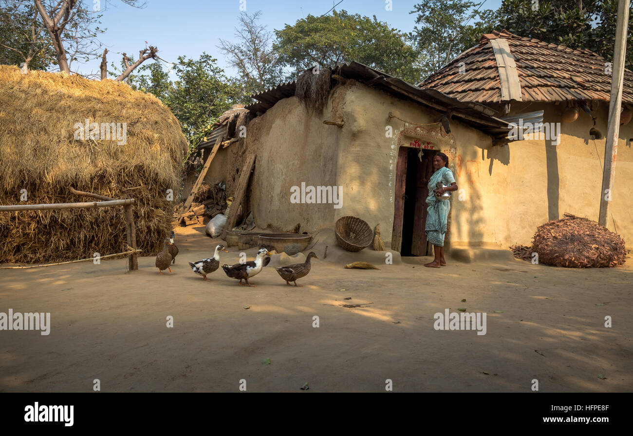 Rural Indian Village In Bankura West Bengal With Mud Huts Poultry And An Old Tribal Woman Standing On The Courtyard