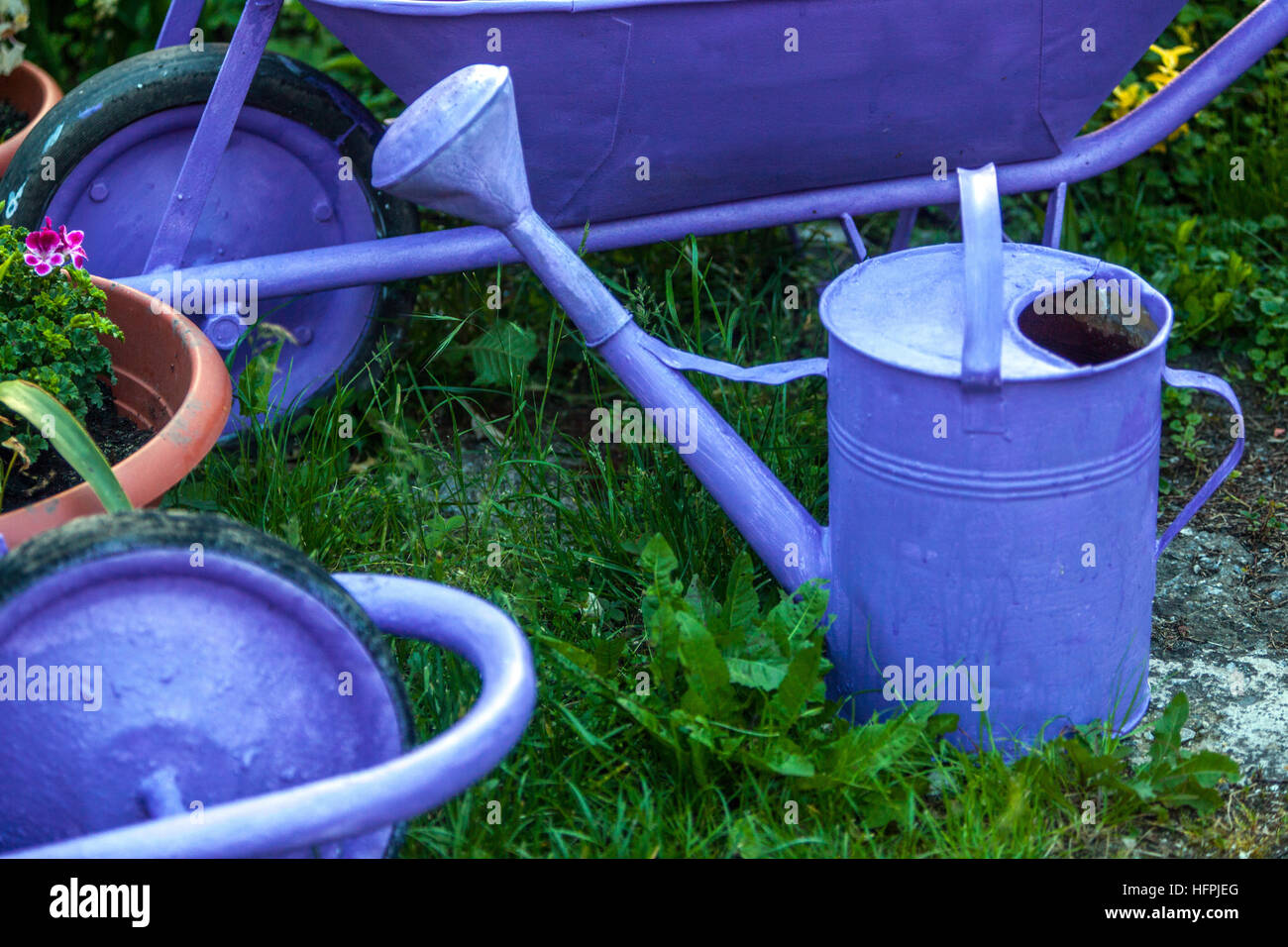 Blue painted items used in the garden, watering can and wheelbarrow - Stock Image