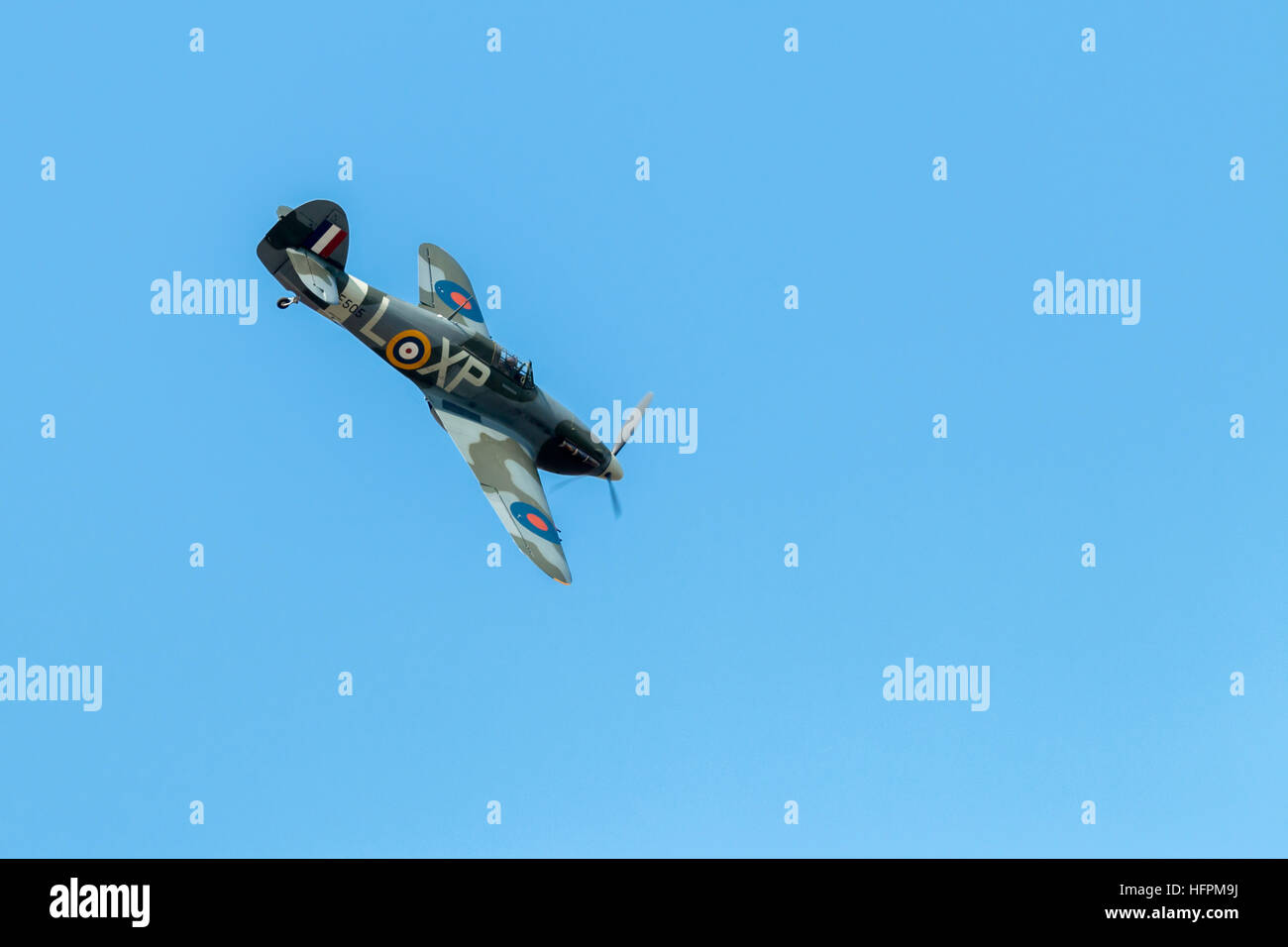 A Merlin Stock Photos A Merlin Stock Images Page 16 Alamy