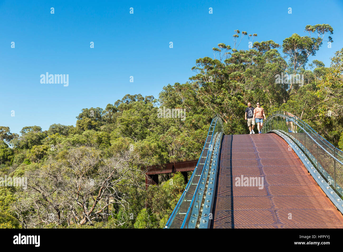 Visitors on the Lotterywest Federation Walkway in Kings Park, Perth, Western Australia, Australia - Stock Image