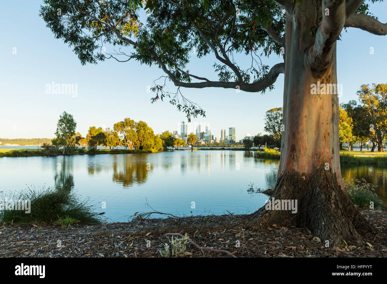 View across St James Mitchell Park and the Swan River to the city skyline at dawn, Perth, Western Australia, Australia Stock Photo