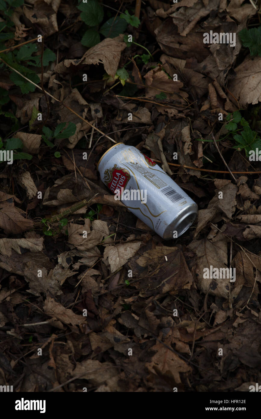 Waste, Litter, Rubbish, Lager, Stella drinks can discarded, thrown, chucked in the leaves alongside a public footpath - Stock Image
