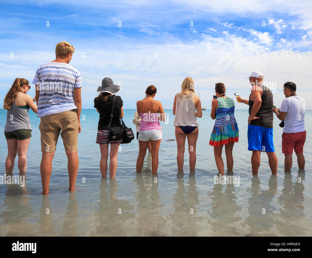 People lining the beach to view the dolphins at Monkey Mia. Western Australia - Stock Image