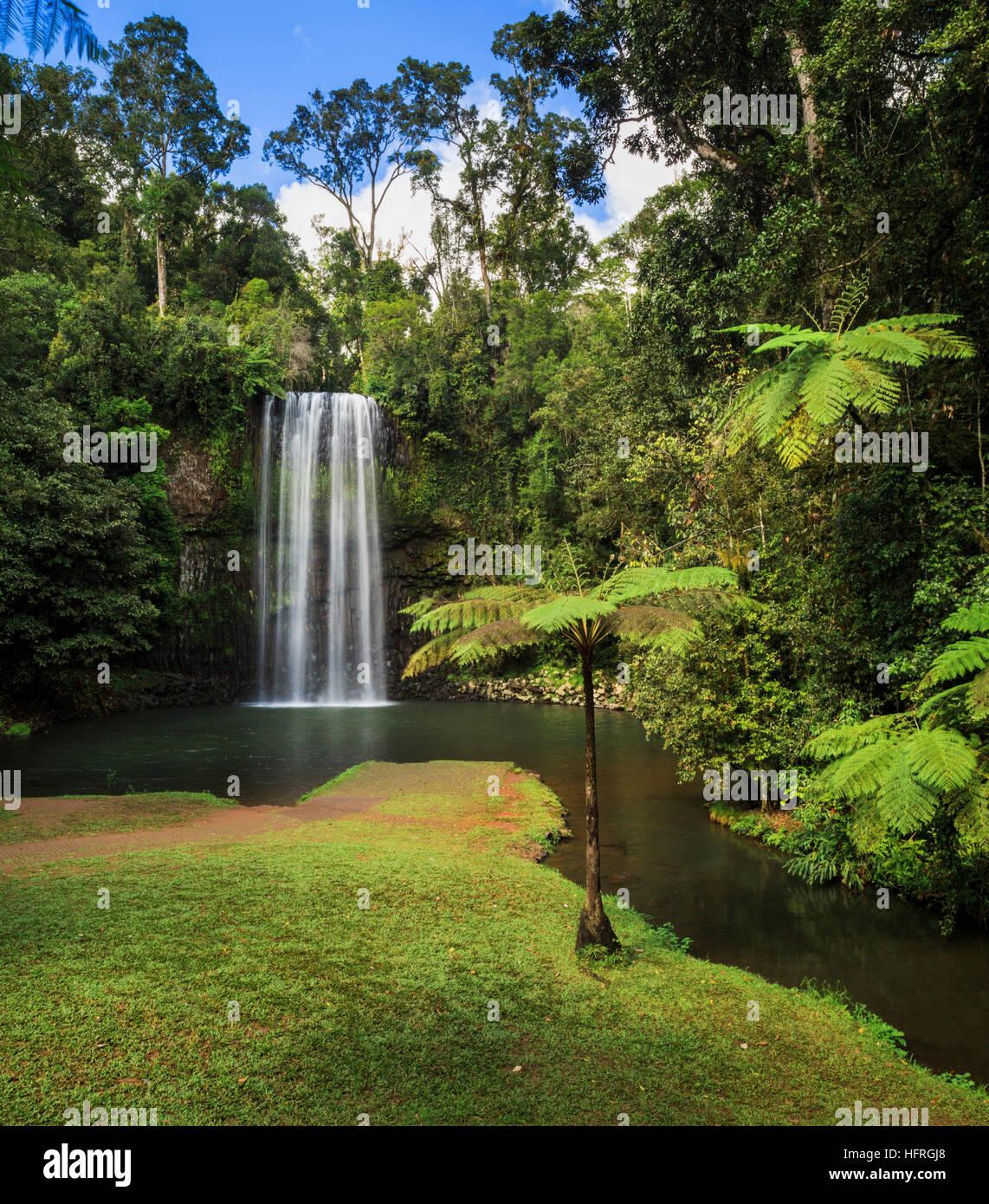 Millaa Millaa Falls. Queensland, Australia - Stock Image