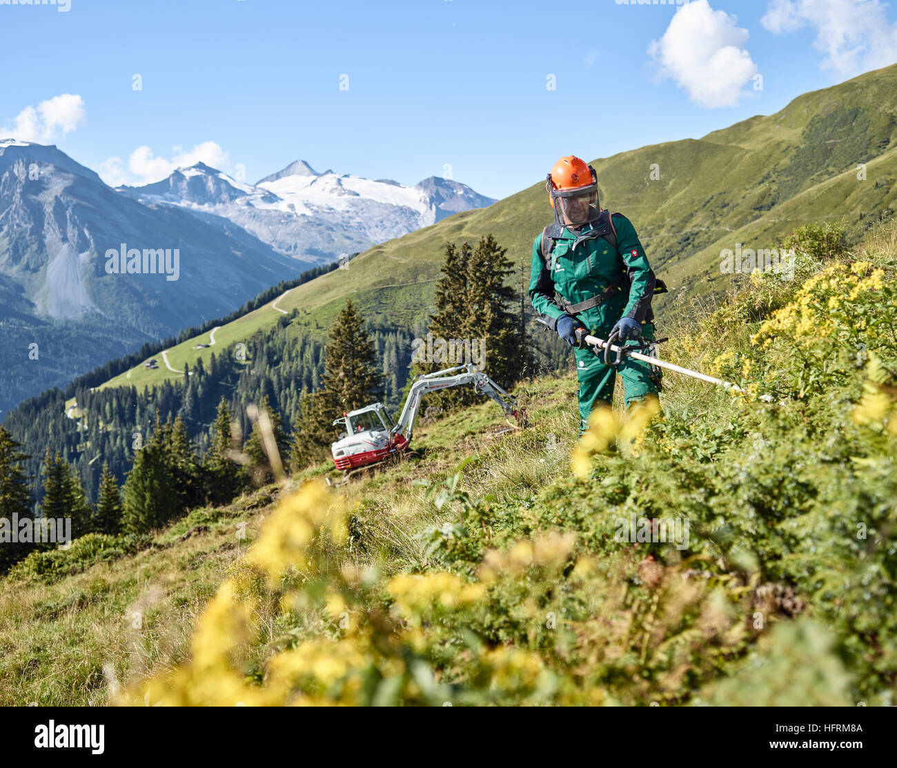Lumberjack on the pasture, mountain landscape, Alps, Hintertux, Tuxertal, Zillertal, Tyrol, Austria - Stock Image