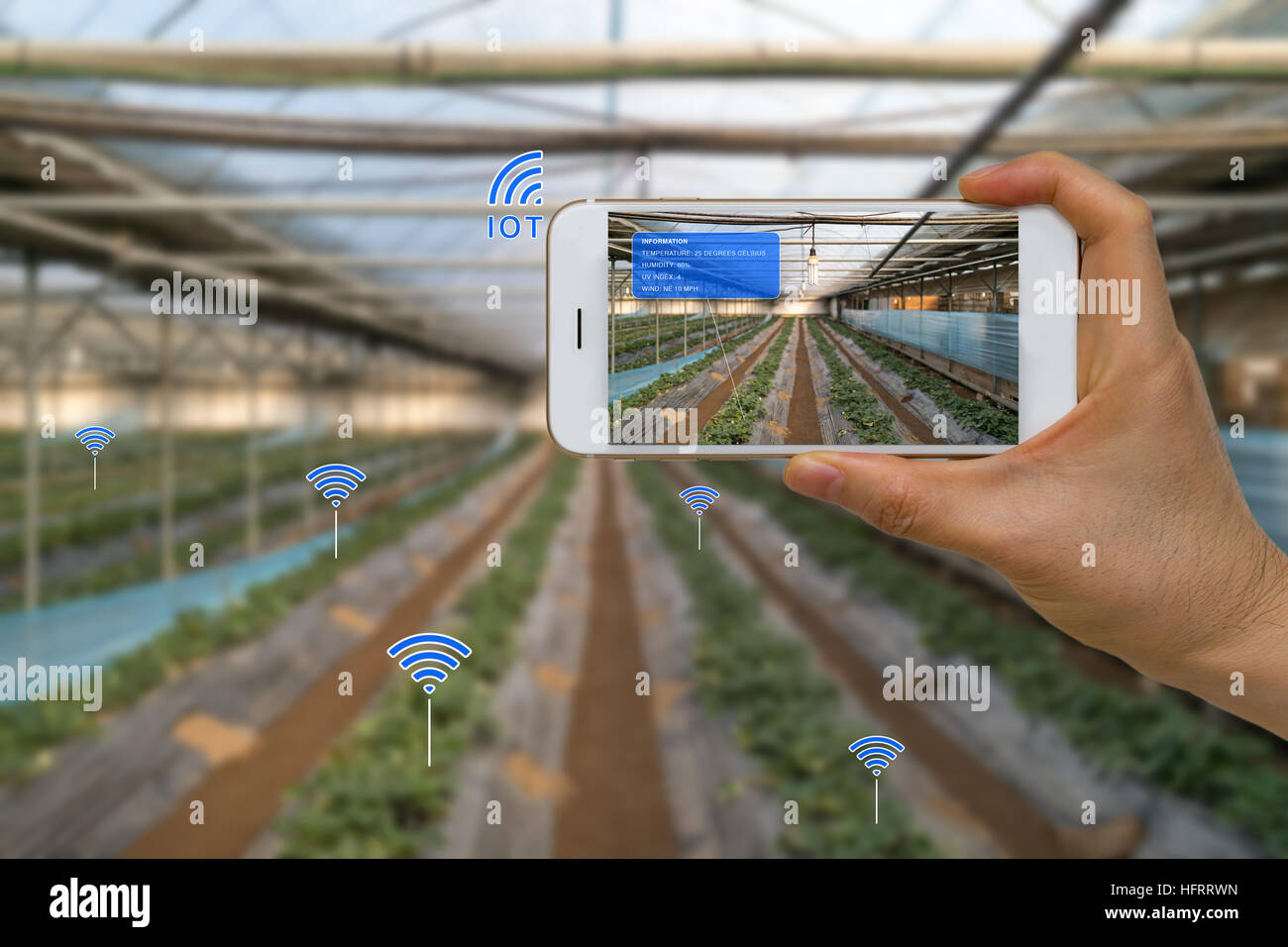 App on smart device showing smart farming agriculture concept using internet of things, IOT, and augmented reality, - Stock Image