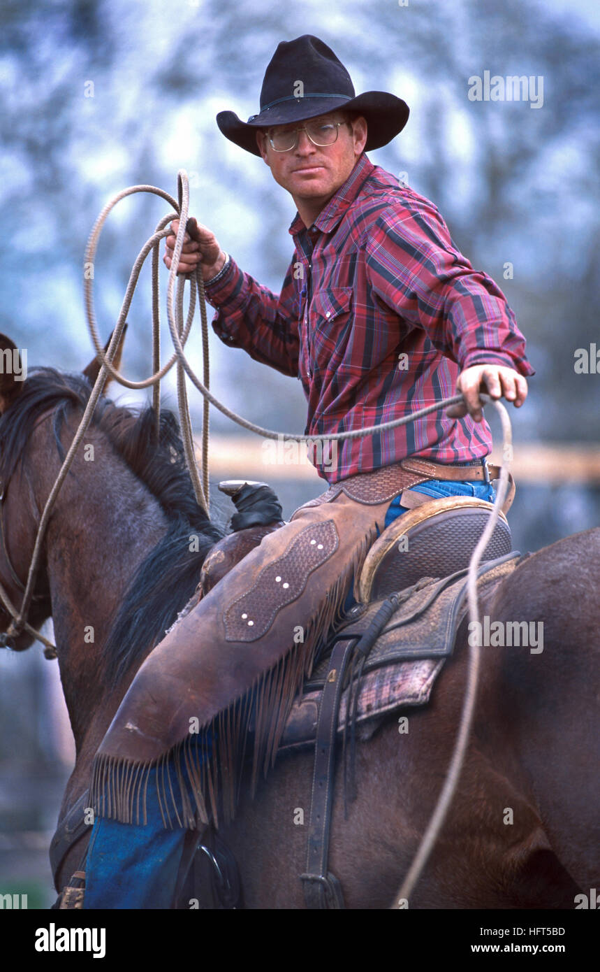 A cowboy with a lasso at a cattle roundup and branding in Belle Fourche, South Dakota - Stock Image