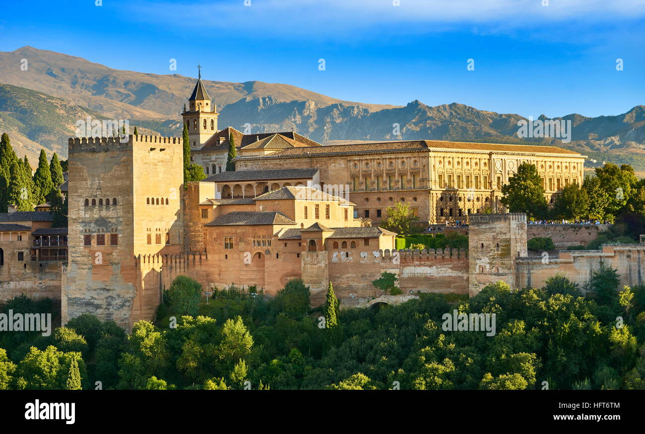 Alhambra Palace, Granada, Andalucia, Spain Stock Photo