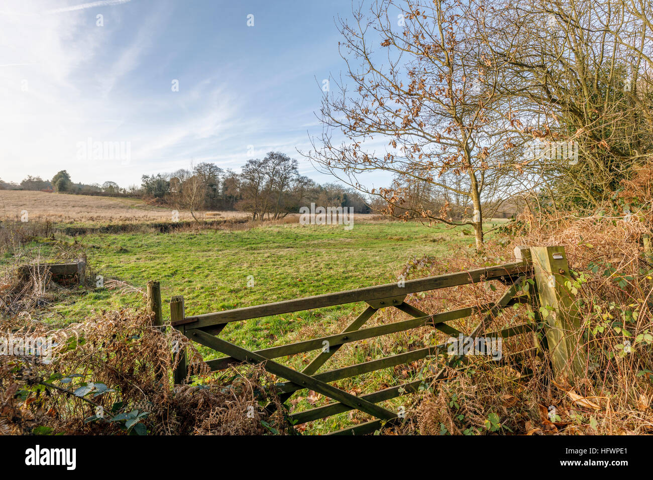 Crooked five bar gate at the entrance to a field in winter at Tilbury, a village near Farnham, Surrey, UK - Stock Image