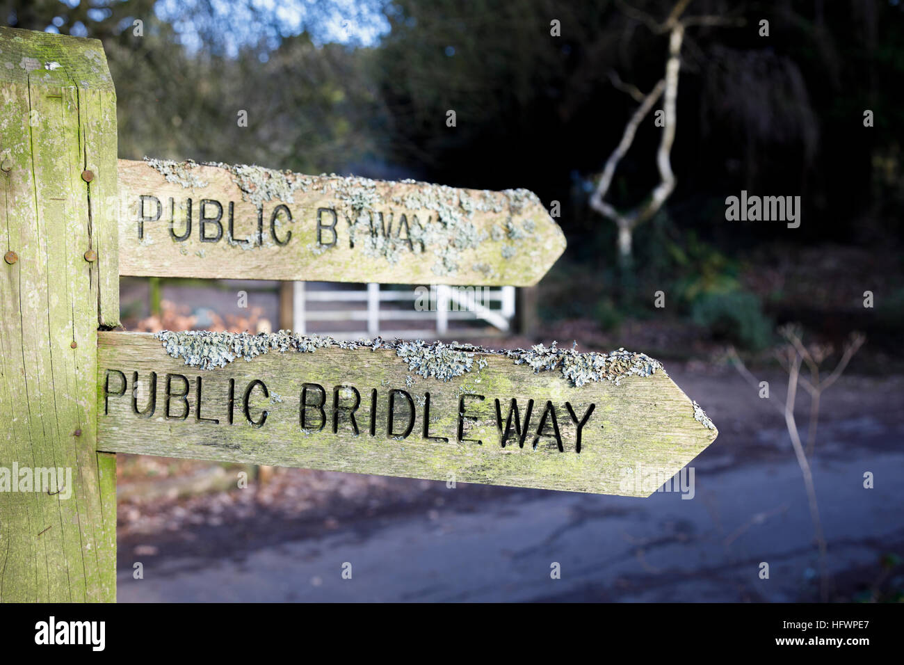 Traditional wooden lichen-encrusted public bridleway and byway fingerpost, Tilford near Farnham, Surrey, UK - Stock Image