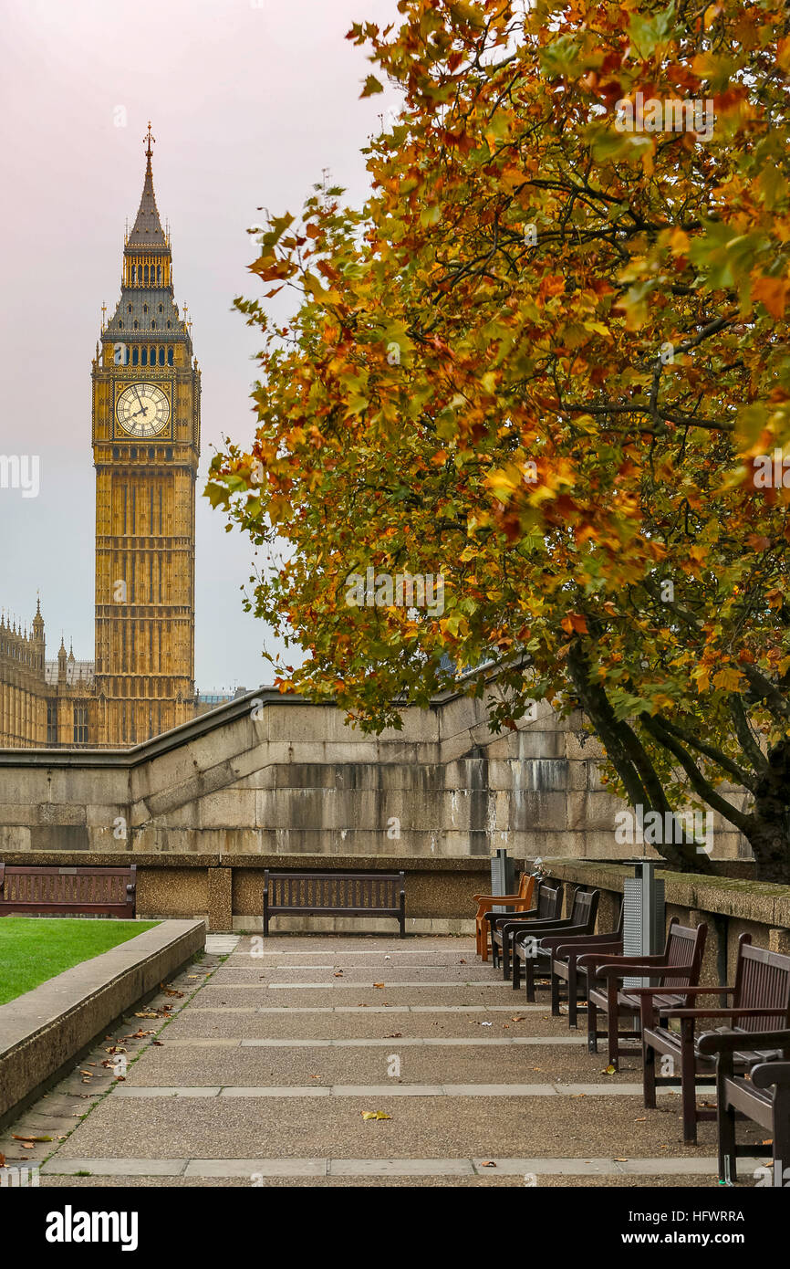 London in the fall - Stock Image